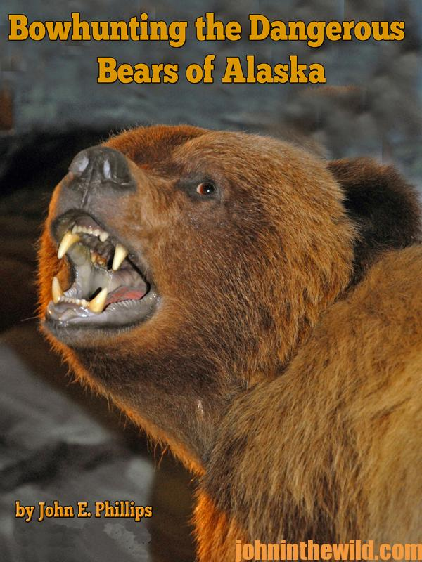 bowhunting-the-dangerous-bears-of-alaska