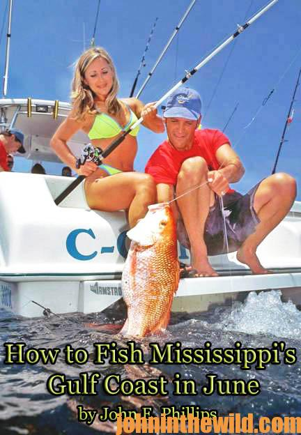 how-to-fish-mississippis-gulf-coast-in-june