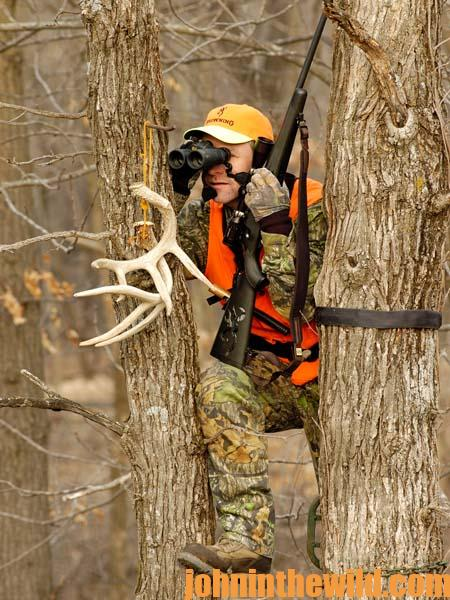 Always wear a harness when hunting high in the woods.