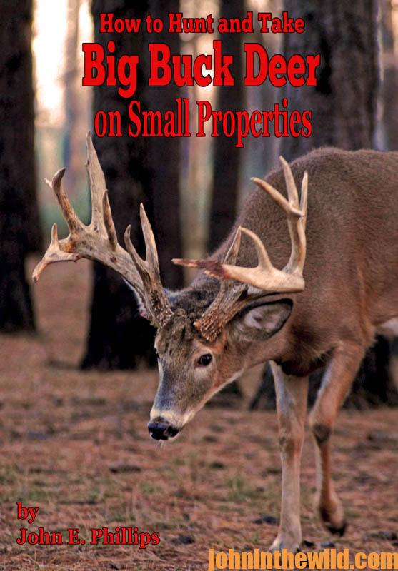 hunt-and-take-big-buck-deer-on-small-properties
