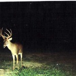 Learn What the Landowner Needs and Offer to Provide Those Services for Him to Have Lands to Hunt Deer