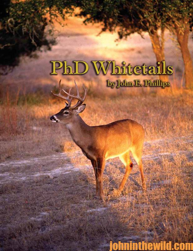 phd-whitetails