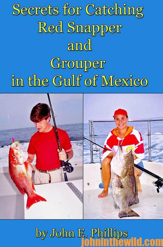 secrets-for-catching-red-snapper-and-grouper