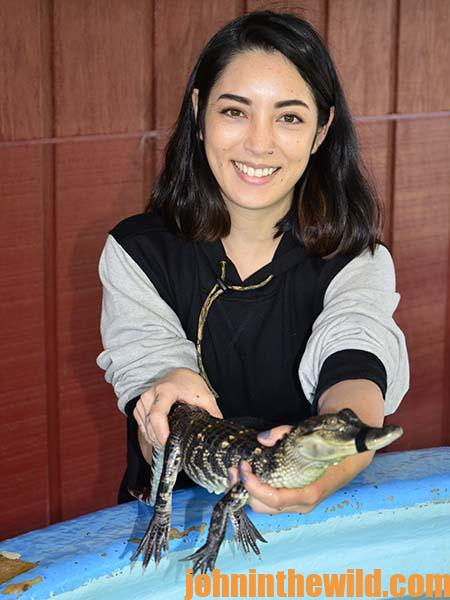 Starting to Farm Alligators at Louisiana's Insta-Gator Ranch and Hatchery - 3
