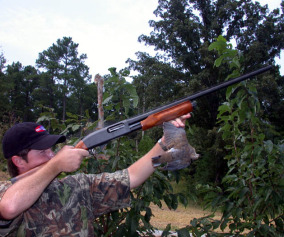 Unusual Places to Hunt Doves 3