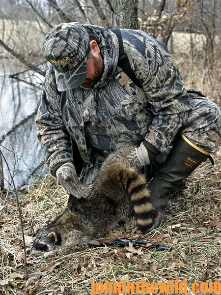 coon hunter