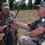 A Great Urban Dove Hunt