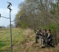 Dove Shooting Strategies and Situations 17