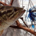 Fishing for Midwest Wintertime Bass with Denny Brauer