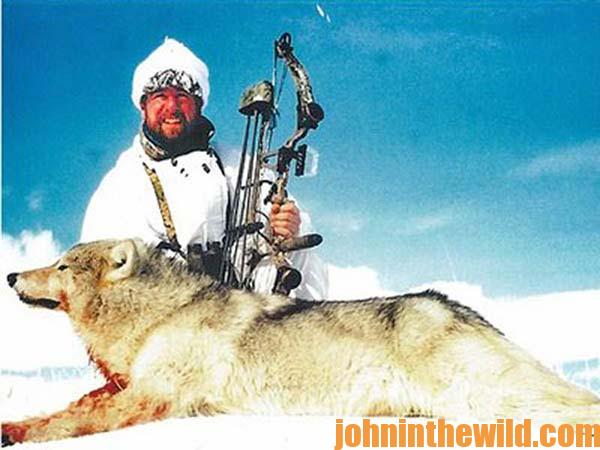 Mike Deschamps Bowhunts Arctic Wolves and Polar Bears 01