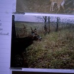 What a Hunter Can Learn After Deer Season