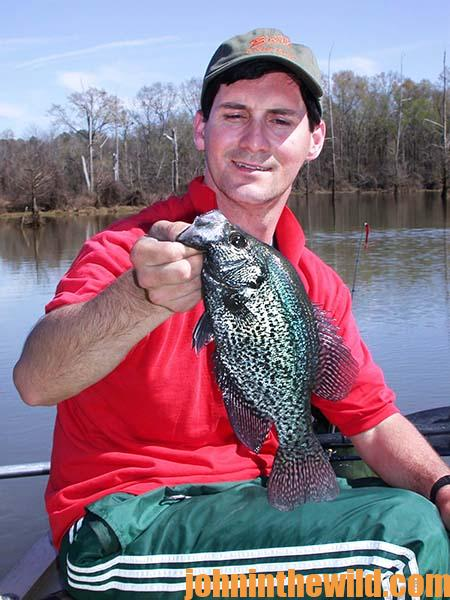 Guide Steve McCadams Plants Brush and Stake Beds for Crappie - 3