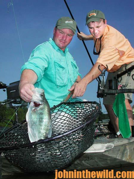 How to Catch Crappie in the Mouths of Creeks 1