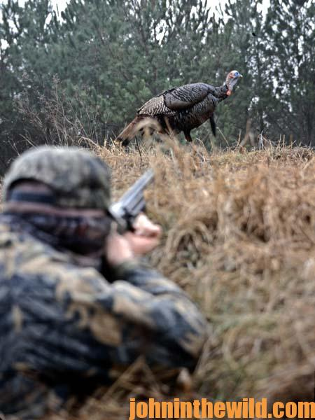 Proving the System of Hunting Turkeys Without a Call with David Hale 1
