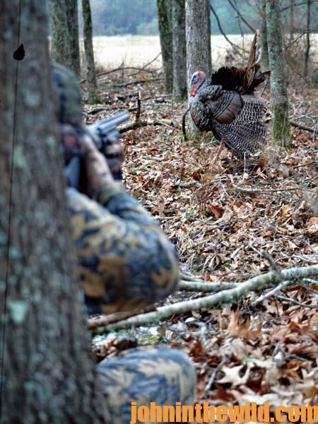 What to Do When the Gobbler Knows More about You Than You Do Him 3