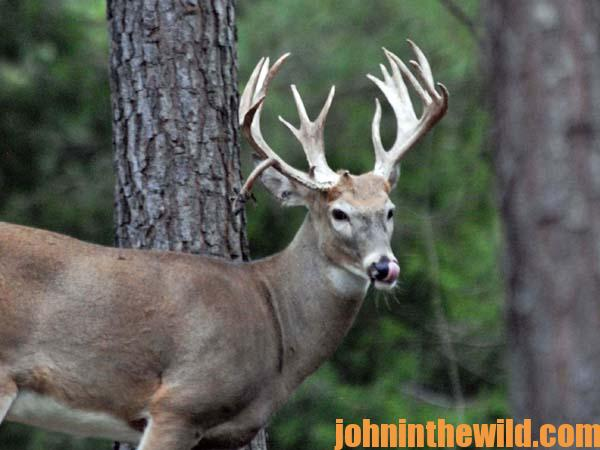 How GPS Solves Deer Hunting's Biggest Problem13