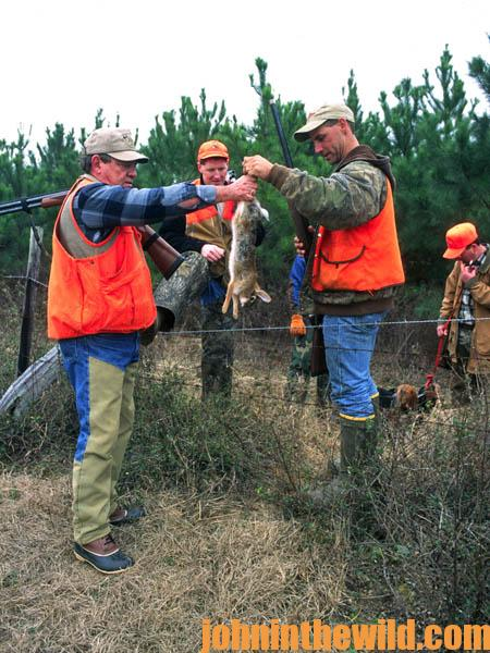 Hunting and Taking Green Field Rabbits16