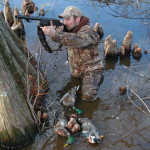 Jump Shoot Ducks at Mid-Day Loafing Areas and Roosting Sites
