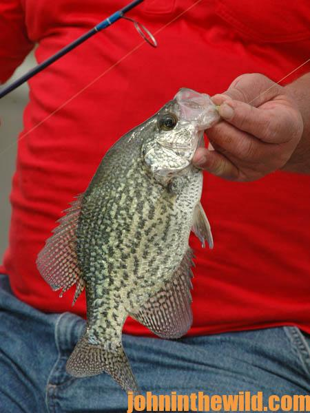 Locate the Thermocline to Catch More February Crappie06