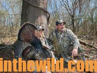 You Need a Hunting Vest, a Sharp Knife, a Camera and a Sleep Machine for the Best Turkey Hunts18a