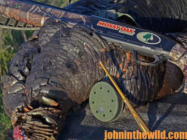 12 Change Your Decoy Spread Each Time You Set-Up to Call Turkeys