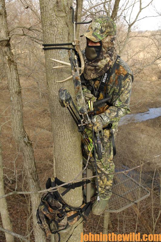 Hunting Deer From A Tree Stand And Calling To Them John