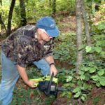What Sustained-Yield Deer Management Is