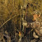 Learn How to Judge Distance when Bowhunting