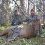 Learn How to Find Elk and How to Get Close to Them with Bill Custer