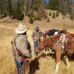 How to Conduct a Wilderness Bow Bull Elk Hunt
