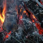 Build a Fire to Survive Outdoors