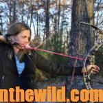 The Importance of Targets, Sights and Clothing to the Bowhunter