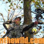 Mistakes of Bowhunters Day 2: Ignoring the Wind and Overusing a Stand When Bowhunting Deer