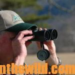 Go Early for Buck Deer Day 1: Learning to Hunt Deer in the Early Season