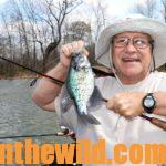 Catching Crappie in October and November Day 4: Learning More Fall Crappie Tactics