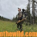 Dudley McGarity Takes a Public Lands' Bull Elk with His Longbow Day 4: Understanding the Challenge and the Mystery of Hunting Elk with a Longbow