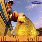 Catching Crappie in October and November Day 1: Taking Warm Weather Crappie with Depth Finders