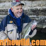 Bass Fishing the Tennessee River's Pickwick Lake in November and December Day 5: How Ronnie Leatherwood Discovered Bluff Fishing for Pickwick's Fall Bass with Live Bait