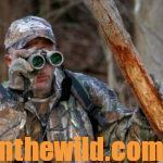Short-Cuts to Bowhunting Deer Success Day 5: Plan Your Shot to Take a Deer