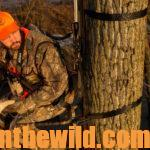 Tree Stands – Friends or Foes for Deer Hunters Day 4: Why Deer Hunters Like Ladder Stands and Safety Harnesses