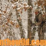 Short-Cuts to Bowhunting Deer Success Day 3: Minimize Mistakes Made in a Tree Stand While Hunting Deer