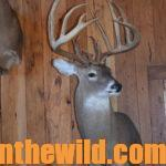 Ten Secrets to Finding and Taking Trophy Buck Deer Day 1: Secret #1 – Locate Trophy Buck Deer Where You Hunt