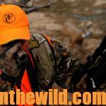 Hunt the Twilight Zone for Big Buck Deer Day 5: Recognize How Hunting Pressure Impacts Big Deer