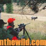 Elk Hunting Survival with Mark Land Day 5: How Far Does an Elk Bow or Rifle Hunter Need to Shoot Accurately