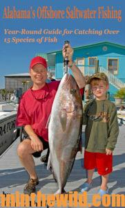 Cover: Alabama's Offshore Saltwater Fishing