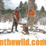 Hunting Elk with Crow Creek Outfitters Day 2: Techniques and Tales for Elk Hunters with Rifles
