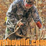 Learn Gene Wensel's Tactics for Taking Big Bucks Day 2: Gene Wensel Uses These Factors to Determine When to Hunt a Big Buck