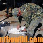 The Best and Newest Deer and Duck Hunting Information  Day 2: Hunt Your Deer from the Skinning Shed