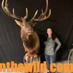Mia Anstine – Adventures of an Unlikely Elk Guide  Day 1: How Mia Anstine Got in the Elk Guiding Business