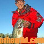 Where and How to Catch Bass in January and February with Bass Pros Day 5: James Niggemeyer's Tips for Southern January Bassing